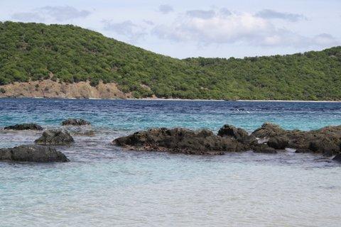 Coki Point Beach