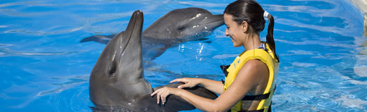 Gran Bahia Principe Sian Kaan dolphins
