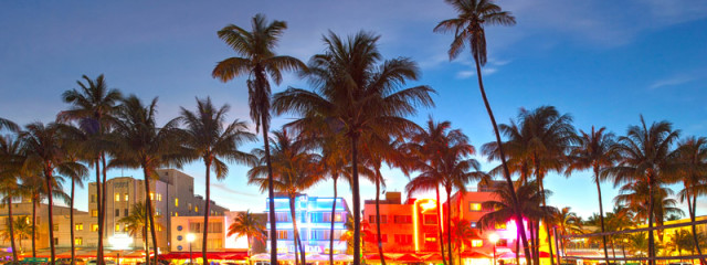 Everything You Need To Know About Miami