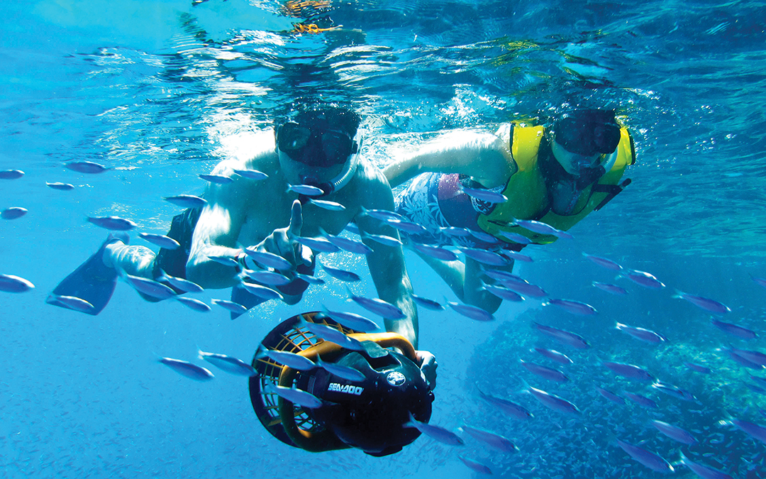 Snorkel and Sea Adventure