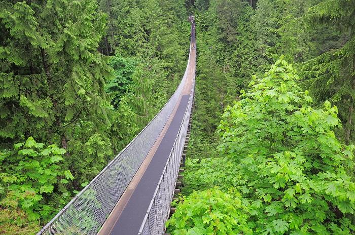 Capillano Suspension Bridge