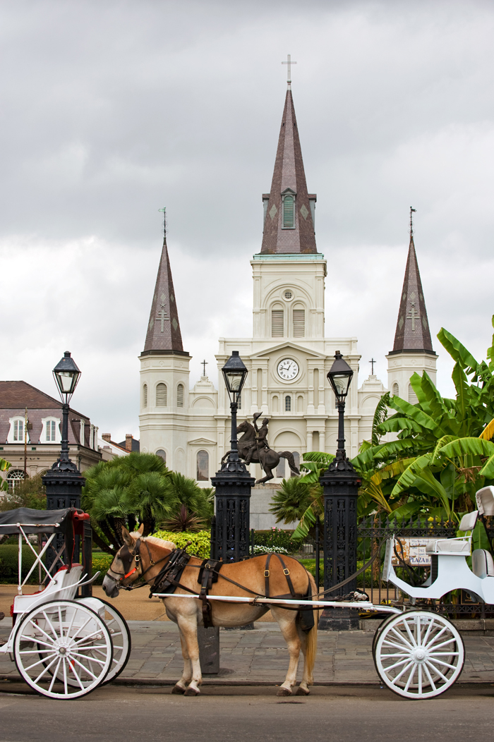 Horsedrawn Carriages on Jackson Square with St Louis