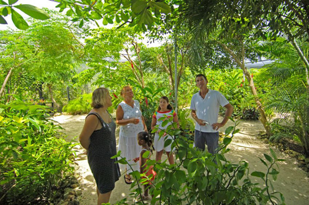 The Butterfly Farm in St. Maarten is a paradise for nature-lovers with many kinds of butterflies fluttering about, protected by the program.