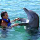 Five animal excursions for your Caribbean vacation