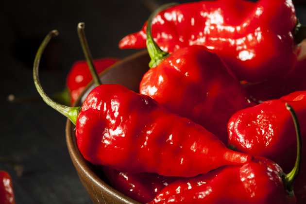 Don't underestimate this pepper as one of the hottest foods in the world.