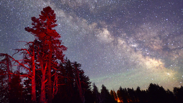 stars in Oregon