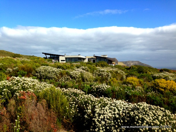 Grootbos Private Nature Reserve, photo courtesy of Man on the Lam