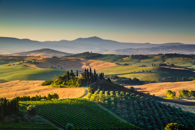 Don't let a trip to Rome go by without tasting the country's famous wines from the Tuscany region.