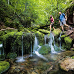 attractions in New Brunswick Fundy National Park