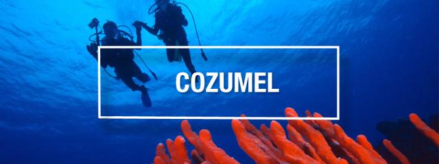 Cozumel Scuba Diving – Best scuba diving in the world