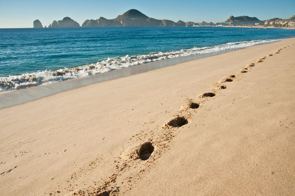 Los Cabos Beach