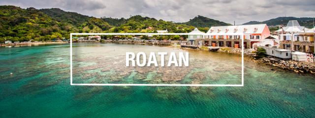 Your Guide to Roatan Scuba Diving