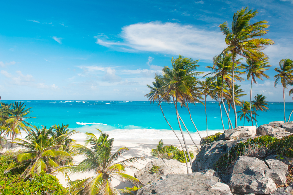 9 Reasons To Visit Barbados Trip Sense Tripcentral Ca