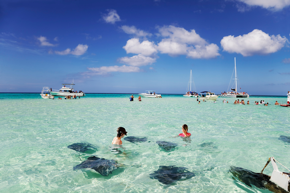 Stingrays at the sandbar off Grand Cayman