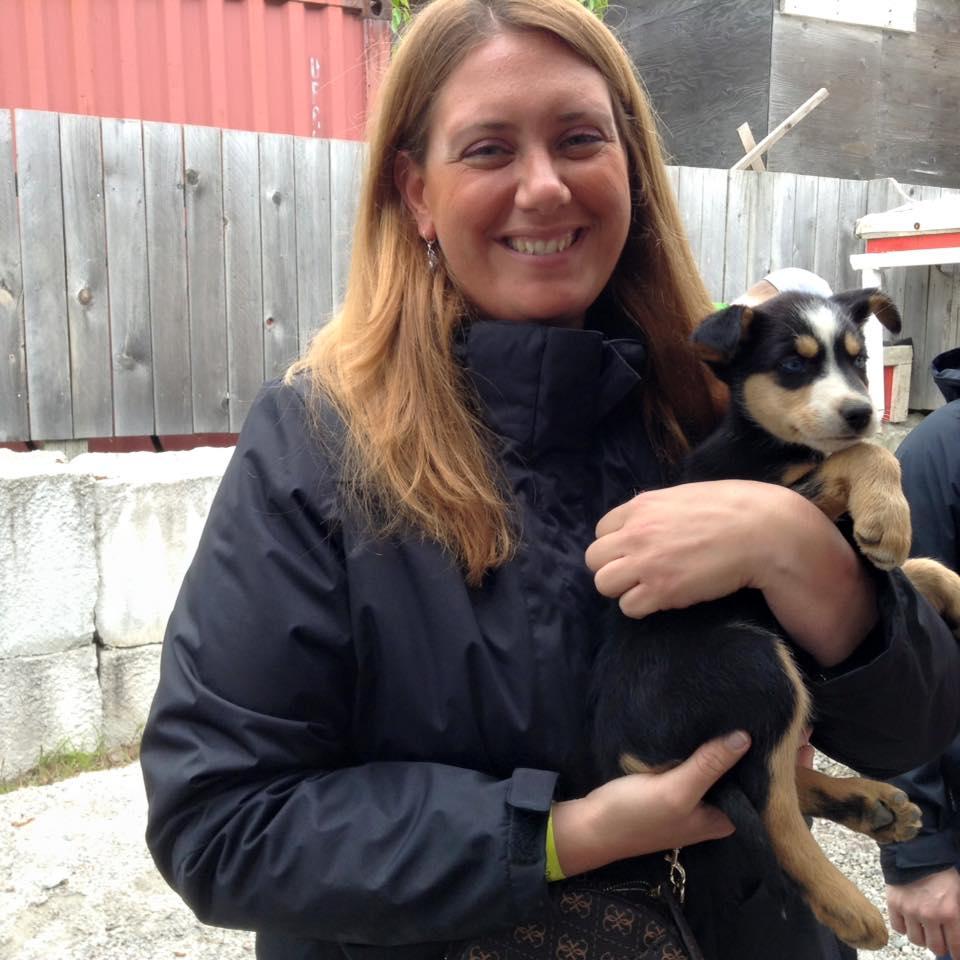 Sled pup Skagway