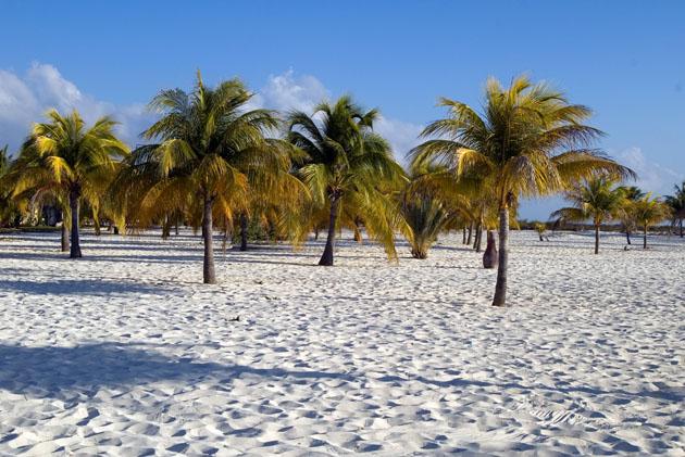 Cayo Largo Vacations Guide