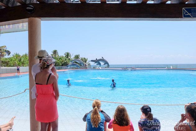 Grand Sirenis Riviera Maya dolphinarium.
