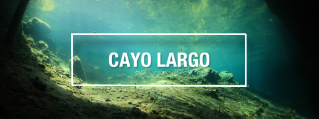 Cayo Largo Scuba Diving Guide