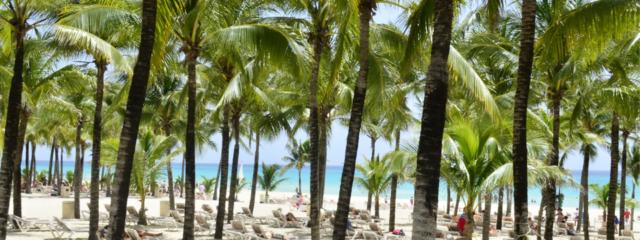 Riu Palace Riviera Maya: The Royal Treatment