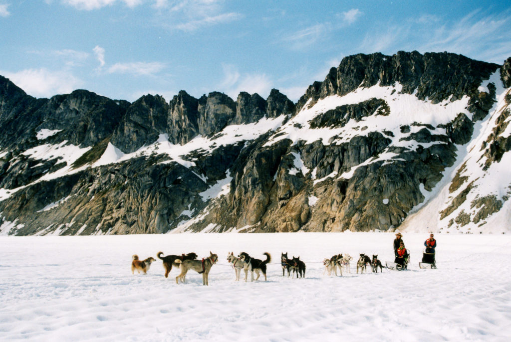 dog-sledding-in-alaska
