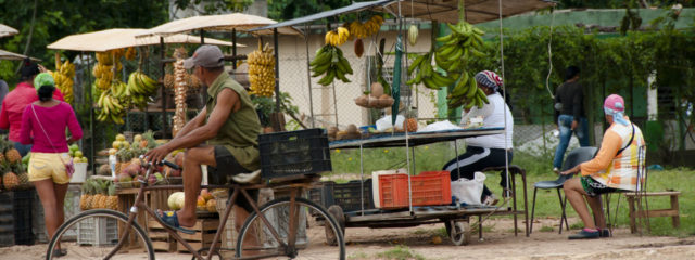 A guide to food in Cuba: what to expect on vacation