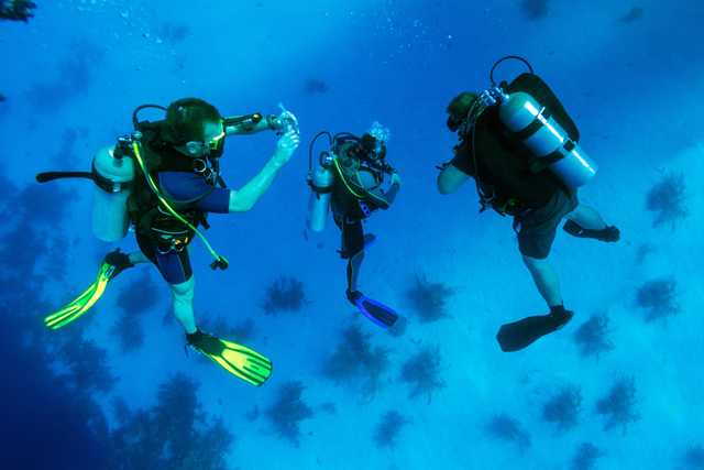 Group of scuba divers in Cuba looking at camera underwater