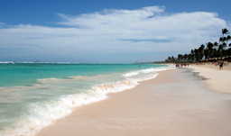 Beautiful tropical beaches - Punta Cana, D.R.