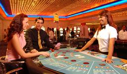 Grand Palladium Bavaro Resort Spa Official Website