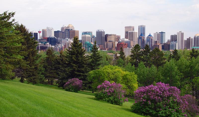 London To Calgary Ab Flights Tripcentral Ca